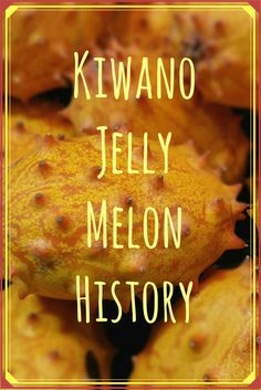 Learn About Kiwano Jelly Melon History - Gardening Know How's Blog