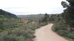 Tramo de #LosArcos - #Logroño en el #CaminodeSantiago. Disfruta de la diversidad de paisajes y sensaciones.  www.caminodesantiagoreservas.com