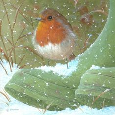 Leading Illustration & Publishing Agency based in London, New York & Marbella. Winter Painting, Winter Art, Rolls Royce Plc, Robin Redbreast, Robin Bird, Winter Scenery, British Wildlife, Winter Pictures, Ceramic Design