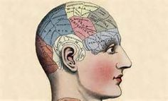 Continuing Education Resources: Long-term memory formation