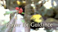 Prayer for Guidance and Direction