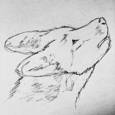 #art #wolf #drawing
