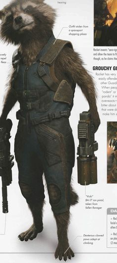 Rocket Raccoon Cosplay, Marvel Characters, Fictional Characters, Comic Pictures, Racoon, Star Lord, Comics Universe, Marvel Dc Comics, Guardians Of The Galaxy