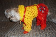 """6.4 *Мастер-класс вязания свитерка для собаки - вязание для собак и кошек , свитера, кофты, попоны для собак, комбинезоны, шапочки, обувь для собак, скачать бесплатно книгу Корин Ниснер """"Вяжем для четвероногих модников"""", needleworkdogss Jimdo-Page!"""