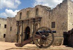 Alamo Archives - JudyDouglass   JudyDouglass