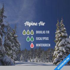 Alpine Air - Essential Oil Diffuser Blend