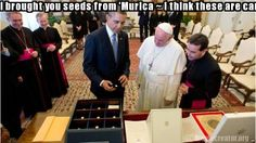 David made this meme ~ I brought you seeds from 'Murica ~ I think these are carrots...