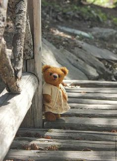 Find images and videos about b&w, bear and teddy on We Heart It - the app to get lost in what you love. Vintage Teddy Bears, My Teddy Bear, Cute Teddy Bears, Tatty Teddy, Color Splash, Teddy Bear Pictures, Boyds Bears, Love Bear, Bear Doll