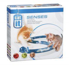 Spielschiene für Katzen