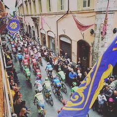 Giro d'Italia 2016 stage 8
