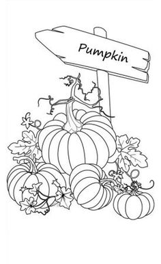 Gardening Autumn - Pumpkins, : Sign of Pumpkins Garden Coloring Page - With the arrival of rains and falling temperatures autumn is a perfect opportunity to make new plantations Garden Coloring Pages, Pumpkin Coloring Pages, Fall Coloring Pages, Halloween Coloring Pages, Coloring Pages To Print, Printable Coloring Pages, Adult Coloring Pages, Coloring Pages For Kids, Coloring Sheets