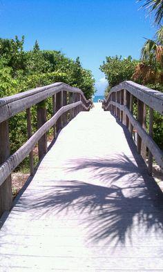 Walkway to a tropical oasis in Vero Beach, Florida.