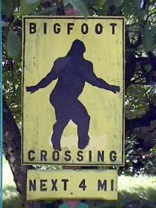 Bigfoot Crossing Sign: Looks like he's skipping. Bigfoot Pictures, Funny Pictures, The Jersey Devil, Finding Bigfoot, Myths & Monsters, Bigfoot Sasquatch, Loch Ness Monster, Mothman, Fun Signs