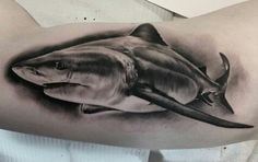 shark tattoo black & grey                                                                                                                                                      More
