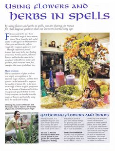Herbs:  Using #Flowers and #Herbs in Spells.