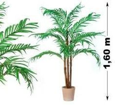 Tuin Műnövény - Kókuszpálma 160 cm Pikachu, Plants, Products, Indoor House Plants, Bamboo, Plant, Gadget, Planets