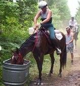 A good site to read for people intrested in endurance riding, it contains links to endurance clubs, and good info for before, during, and after a ride
