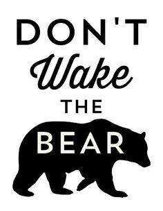 Don't Wake the Bear @SayEverything