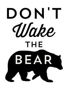 Don't Wake the Bear @SayEverything