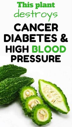 This plant destroys cancer, diabetes and high blood pressure.