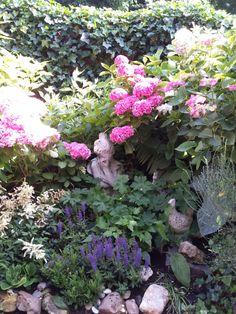 Mijn tuin Juli