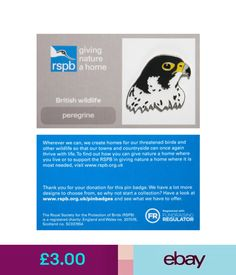 Collectable Badges Rspb Pin Badge | Peregrine Head | Gnah Backing Card [00408] #ebay #Collectibles British Wildlife, Our Town, Peregrine, Pin Badges, How To Find Out, Jewellery, Ebay, Cards, Pilgrim