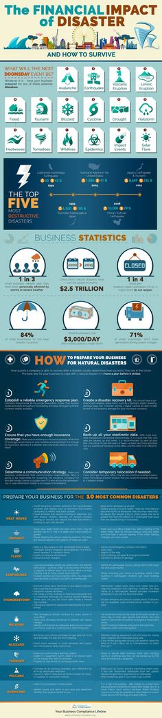 The Financial Impact of Disaster Infographic