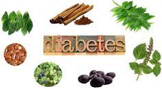 medicina ayurvédica para la diabetes en la salud de bangalore
