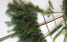 Herbs, Plants, Christmas, Ol, Home Decor, Xmas, Decoration Home, Room Decor, Herb