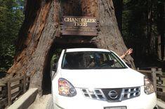 road trip ideas Seattle to San Francisco