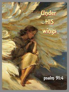 Psalms 91 v 4