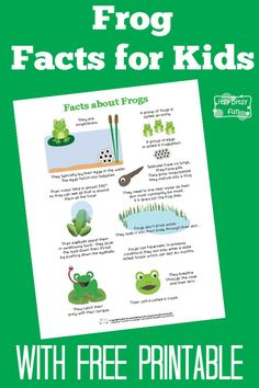 Fun Frog Facts for Kids With Free Printables
