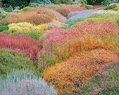 73 Best GARDENS images | Landscaping, Garden Art, Paisajes
