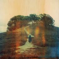 Amazing Polaroid photography by Brandon Long