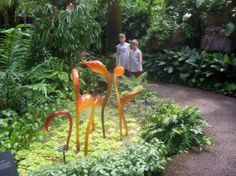 Missouri Botanical Garden: Chihuly glass at the Botanical Garden in St. Louis