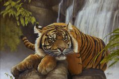Shere Khan by thomsontm.deviantart.com on @deviantART