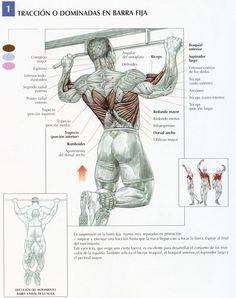 Tene un buen cuerpo sin ir al Gym!!
