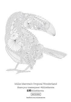 Relax the mind and body with some colouring in and this beautiful toucan pattern free download from Millie Marotta's latest book Tropical Wonderland!