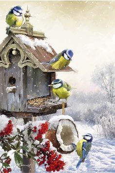 Bluetits 1 By The Macneil Studio Canvas Art, Christmas Bird, Christmas Scenes, Christmas Pictures, Vintage Christmas, Christmas Crafts, Animals Watercolor, Colorful Birds, Christmas Printables, Bird Art