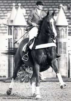 Throwback Thursday: Watch Susie Hutchison Survive The Ultimate Interference On Course | The Chronicle of the Horse