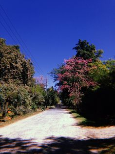 Sidewalk, Argentina, Side Walkway, Walkway, Walkways, Pavement