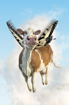 fredrickson butterfly cow flying.  Even cows have fun :)  #SpiritHood #inneranimal