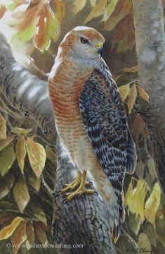 Catherine McClung watercolor - Splendor of the Season