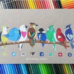 Social media birds By: @floating_colour _ Follow us for more by universeofartworks