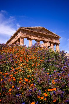Greek ruins in Sicily.