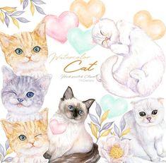Watercolor Cats Clipart Digital Kitten Download Printable | Etsy Watercolor Books, Watercolor Cat, Image Printable, Bear Clipart, Kitten Images, Underwater Creatures, Image Cat, Cat Breeds, Cute Cats