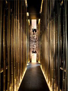 corridor of golden bamboo..... by Steve Leung
