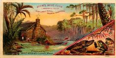 Victorian Trade Card Advertising Ayer's Ague Cure 1890s Swamp Cabin Frogs Gator