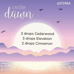 Cedar dawn diffuser blend. Doterra cedarwood, elevation and cinnamon. Happy & calming blend.