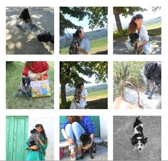 #interviews #fashionanimals #pet #fashionblogger #fashionblog #dog #lilly